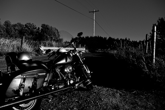 Road King on a Country Road